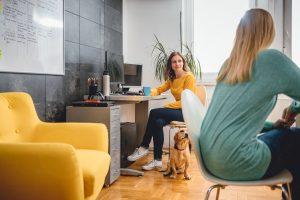 Bürohund: Stärkt das Miteinander