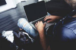 Bürohund: Gut für die Konzentration